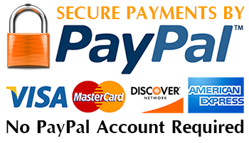 We accept any major credit car through PayPal